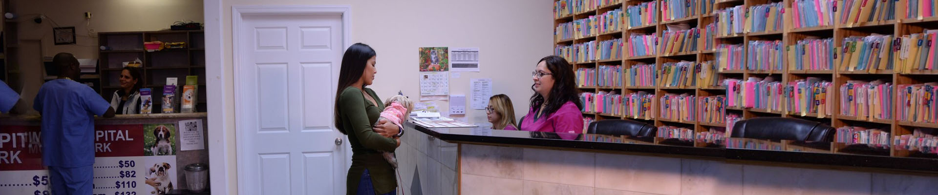 Veterinary Vaccination and Immunization at Animal Hospital